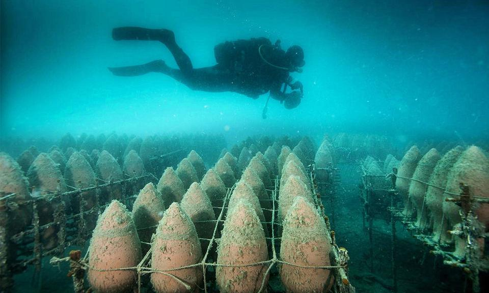 Underwater Aging Wine - image from www.forbes.com